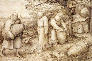 Imkers aan het werk. Tekening van Pieter Brueghel de Oude (1525/1530-1569).